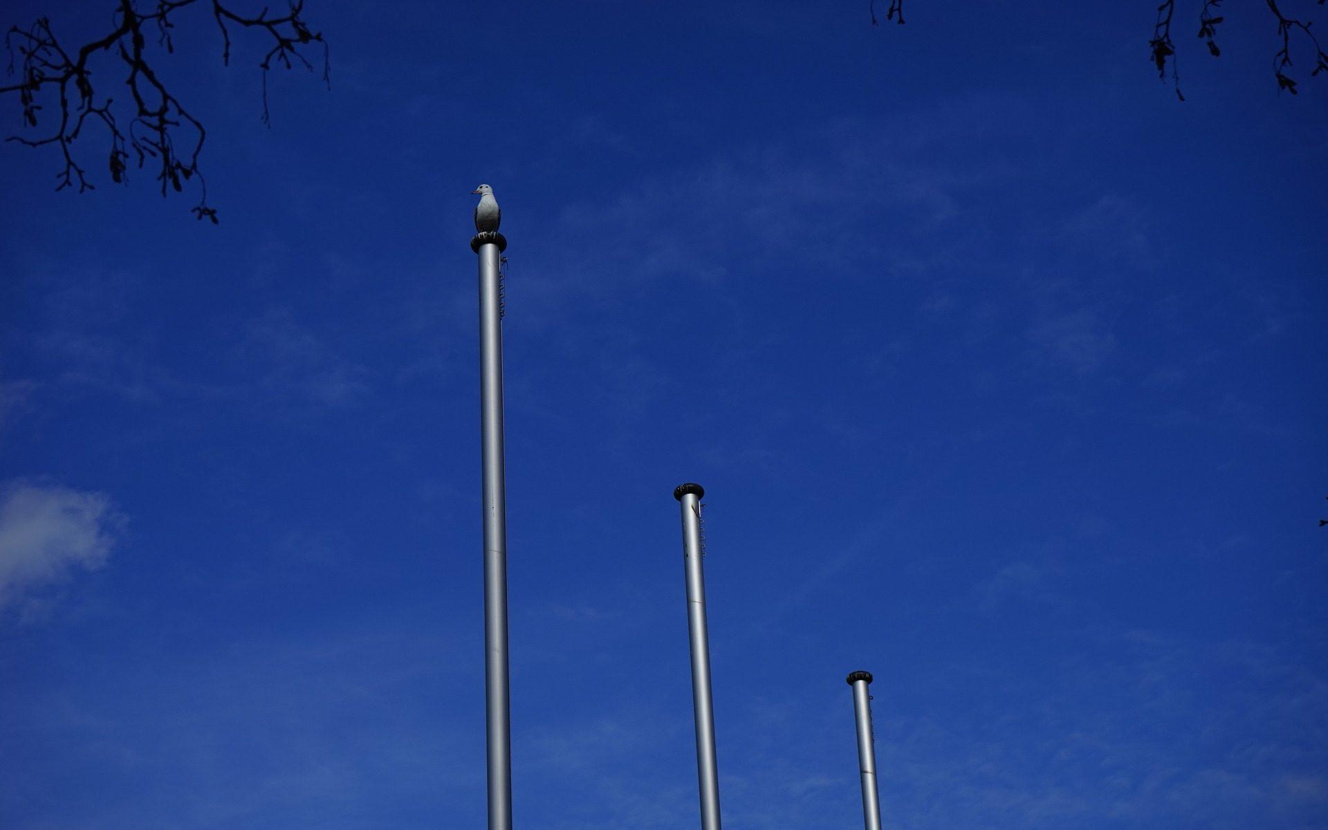 Wiederinbetriebnahme der historischen Fahnenmasten vor dem Rathaus