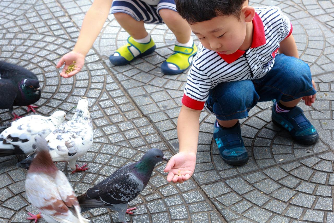 Kündigung der Kinderbetreuung durch die Stadt Leipzig nach Wohnortwechsel